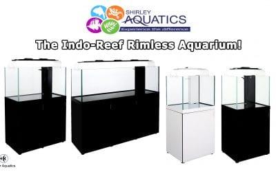 What is the best Rimless Aquarium?