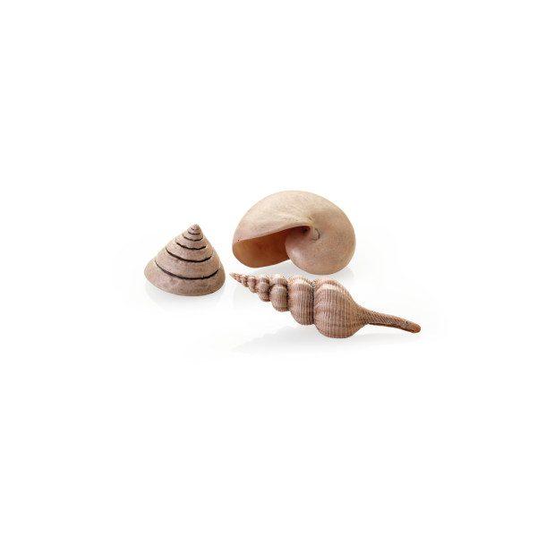 biorb natural seashells ornaments