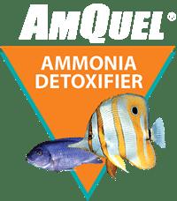 AmQuel