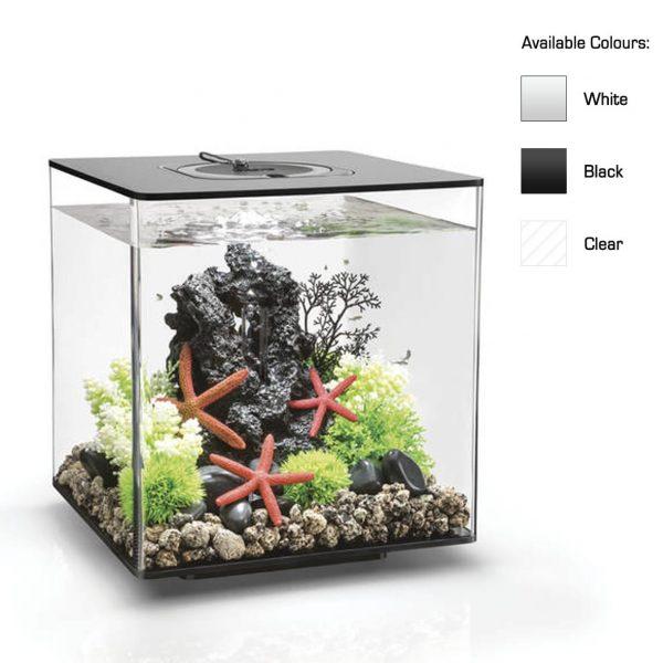 oase biorb aquarium mcr led cube