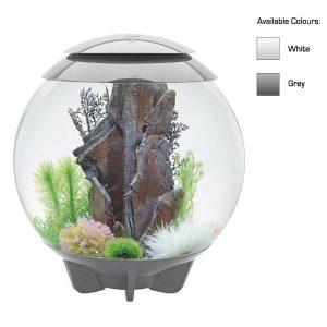 oase biorb aquarium mcr led halo