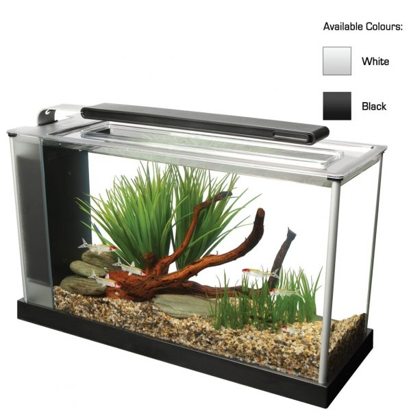 fluval spec aquarium kit with filtration and lighting in black and white