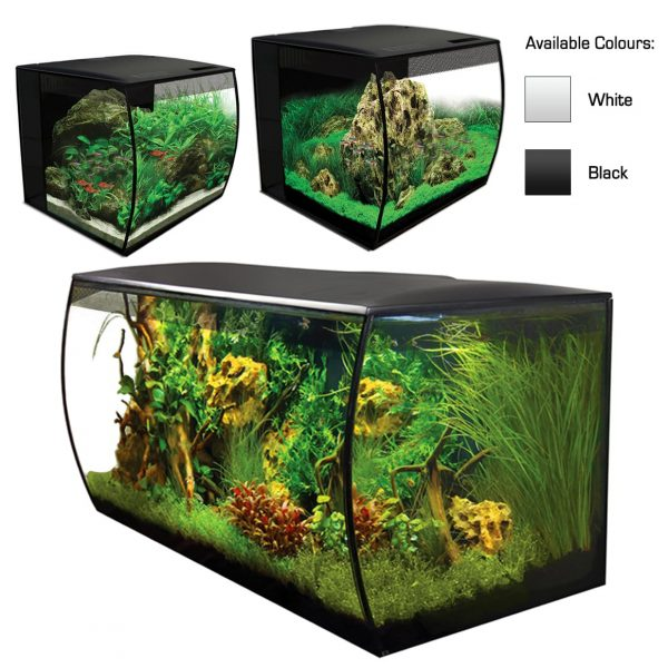 fluval flex curved aquarium kit black and white with LED Lighting and Filtration