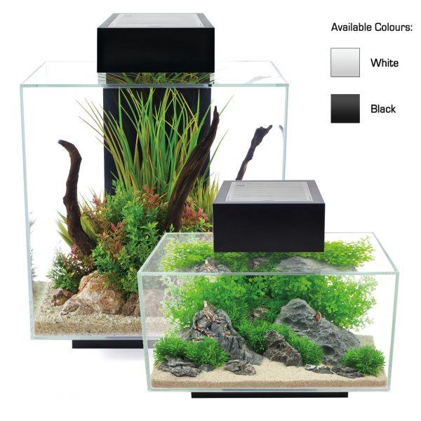 fluval edge aquarium kit with lighting and filtration