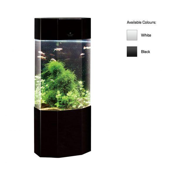 cleair yukon acrylic aquarium set with stand