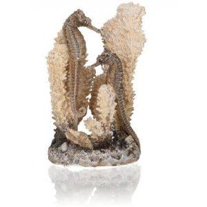 oase biorb aquarium seahorses on coral natural colour