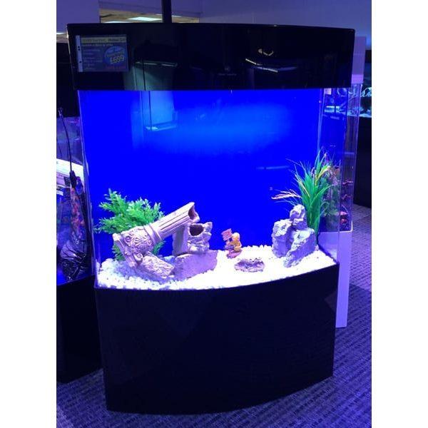 malawi bow front acrylic aquarium set