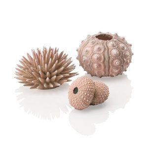 oase biorb aquarium sea urchin decoration