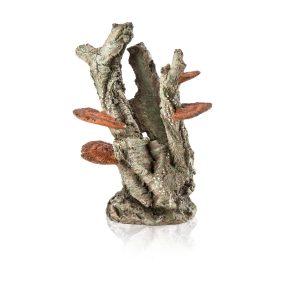 oase biorb aquarium fungus on trunk decoration