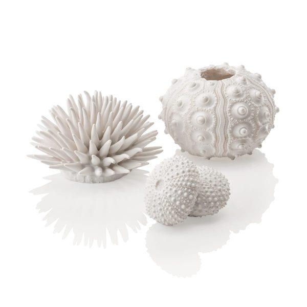 oase biorb aquarium white sea urchin decoration
