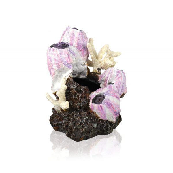 oase biorb aquarium decoration pink barnacle cluster
