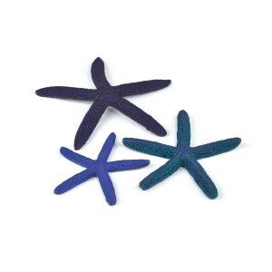 oase biorb aquarium decoration starfish blue