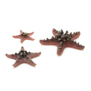 oase biorb aquarium decoration pink starfish 3 set