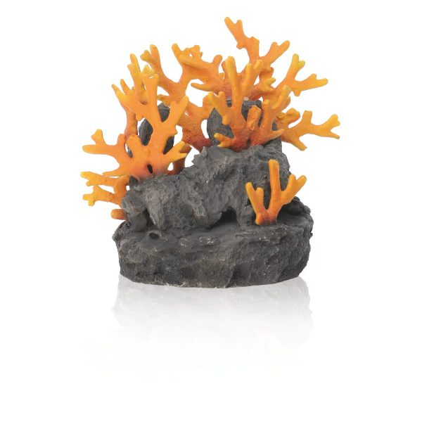 oase biorb aquarium lava rock sam baker decoration