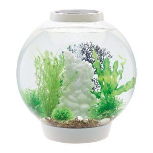 biorb classic aquarium oase