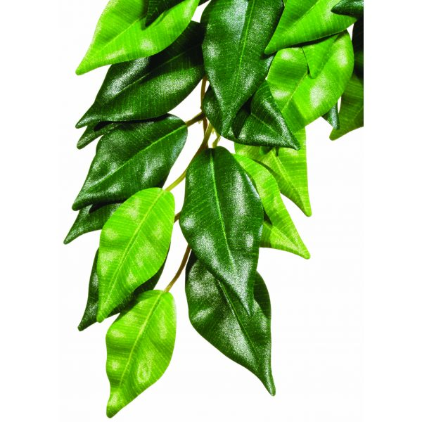 reptile exo terra Ficus Silk Plant Medium