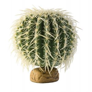 exo terra Barrel Cactus Medium