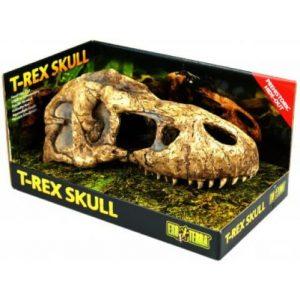 exo terra reptile T Rex Skull dinosaur ornament