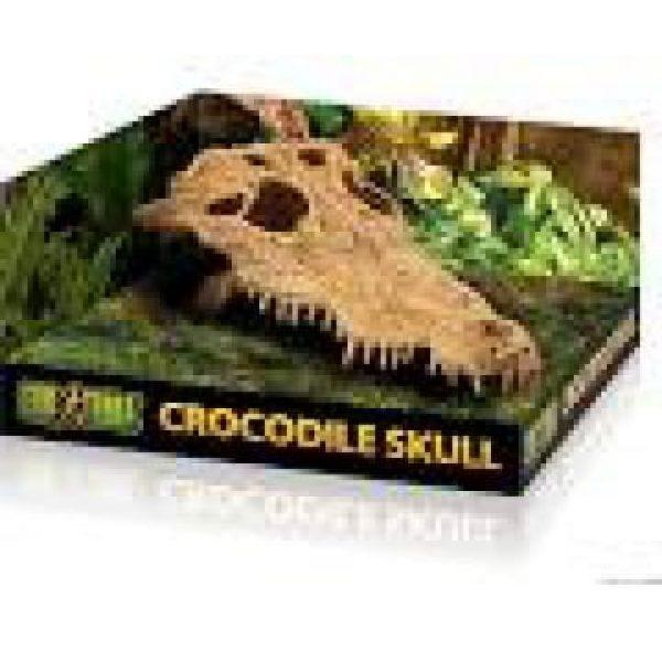 exo terra reptile Crocodile Skull Ornament