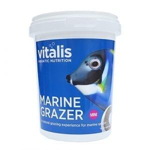 vitalis marine grazer marine food