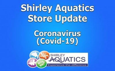 Shirley Aquatics Store Update – Covid-19