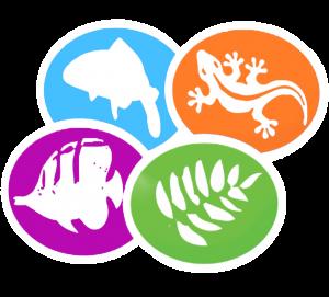 used for care sheets shirley aquatics logo