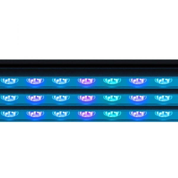 reef factory reef flare bars blue led aquarium marine lighting for corals close up