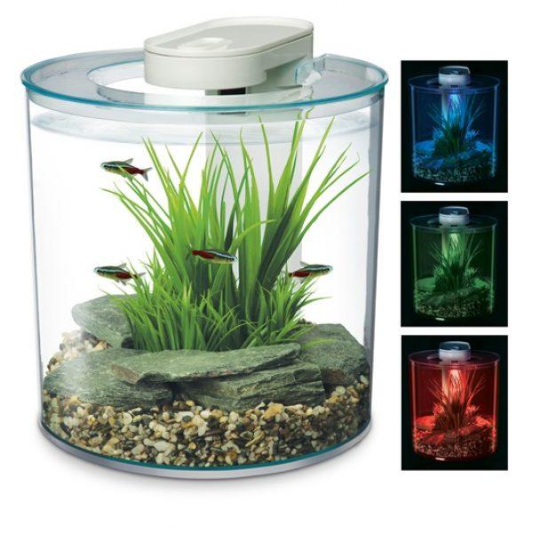 marina 360 degree acrylic 10 litre aquarium