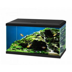 ciano freshwater aquarium black aqua 60