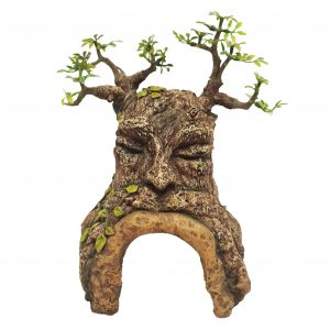 tree cave with face ornament